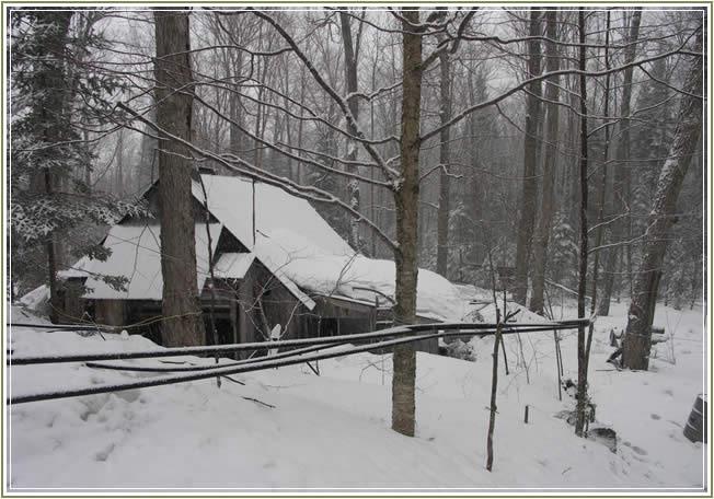 sugar-shack